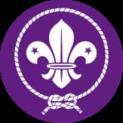 Los scouts cumplimos 100 años en España. ¿Lo celebras con nosotros?